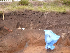 Dark soil represents undisturbed cultural deposit (see closeup of area in photo below)