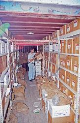 Dr. Parker inspects 5 tons of artifacts packed into a 40-foot cargo container